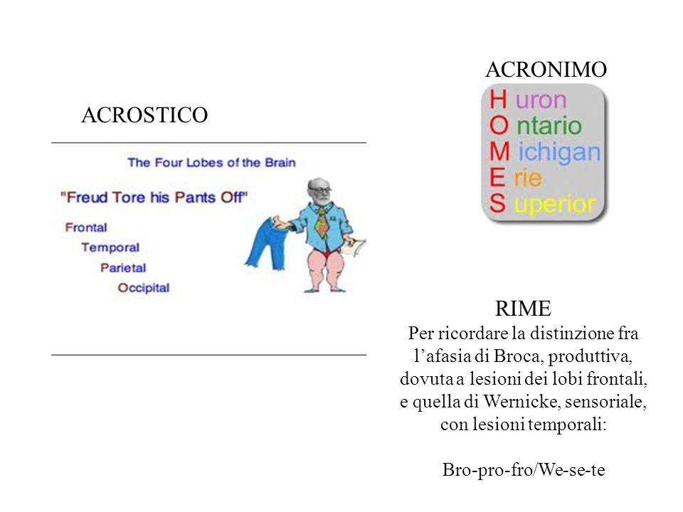 RIME Per ricordare la distinzione fra l'afasia di Broca, produttiva, dovuta a lesioni dei lobi frontali, e quella di Wernicke, sensoriale, con lesioni