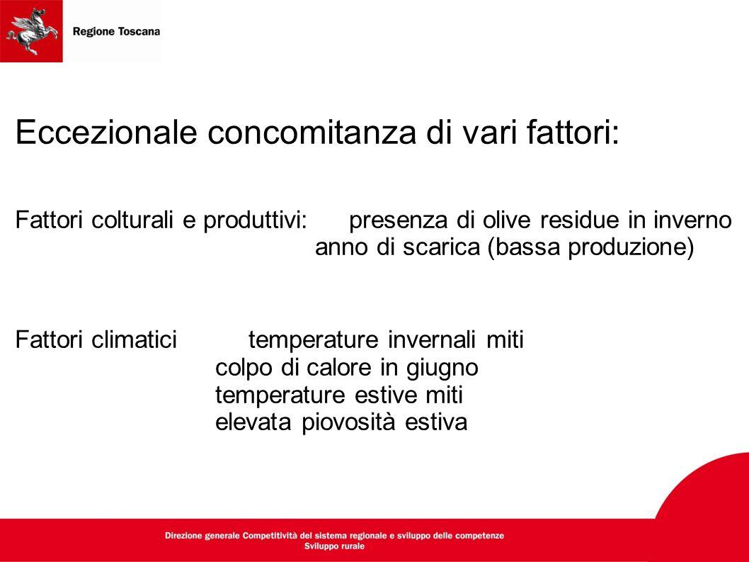 Eccezionale concomitanza di vari fattori: Fattori colturali e produttivi: presenza di olive residue in inverno anno di scarica (bassa produzione) Fatt