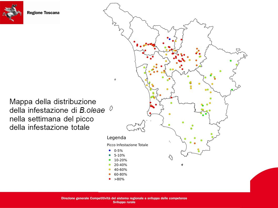 Mappa della distribuzione della infestazione di B.oleae nella settimana del picco della infestazione totale