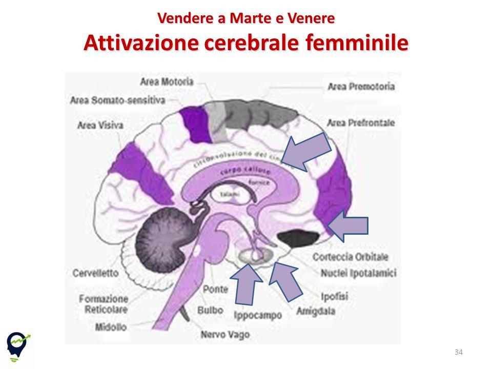 34 Vendere a Marte e Venere Attivazione cerebrale femminile