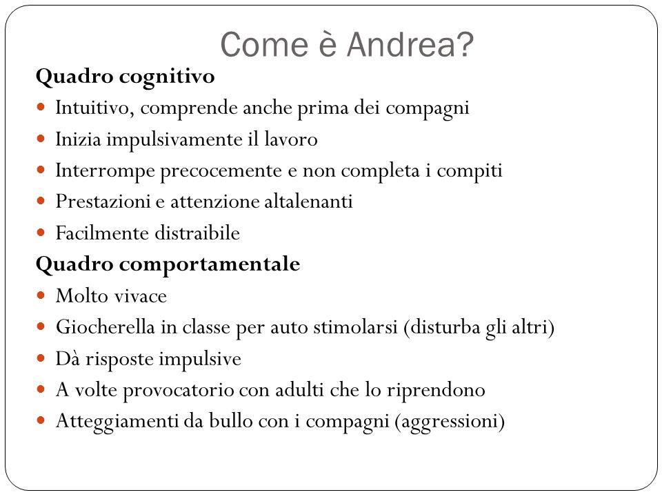 Come è Andrea? Quadro cognitivo Intuitivo, comprende anche prima dei compagni Inizia impulsivamente il lavoro Interrompe precocemente e non completa i