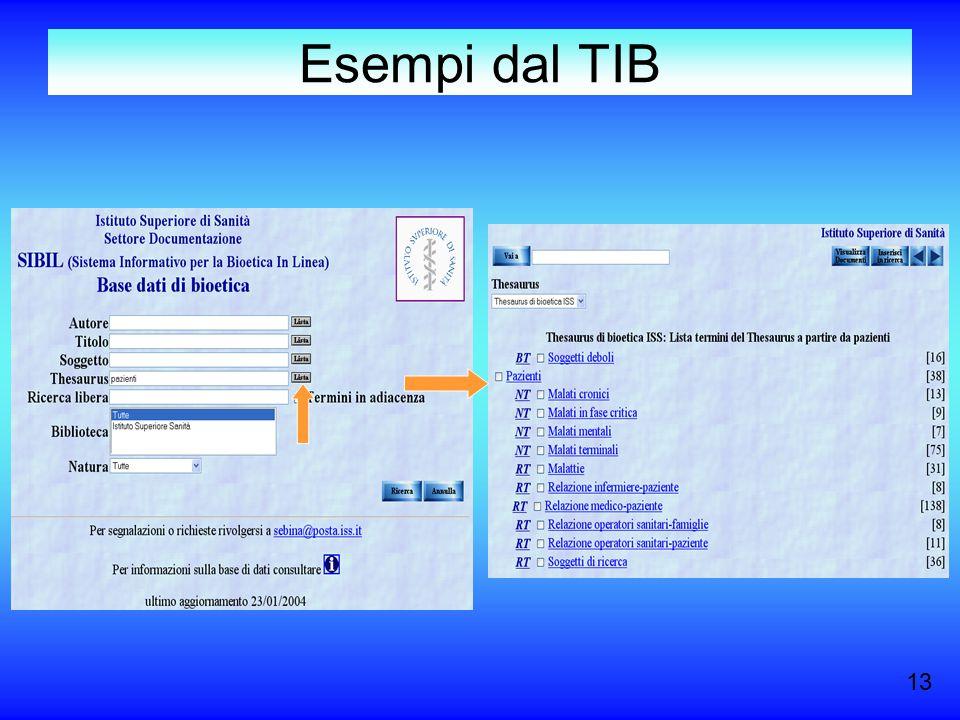 Esempi dal TIB 13