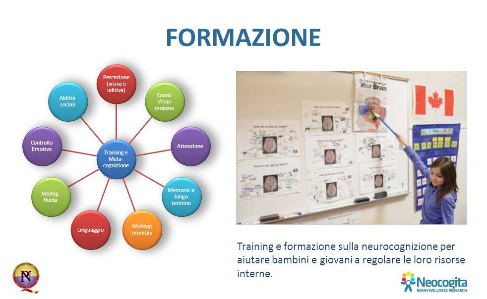 FORMAZIONE Training e Meta- cognizione Percezione (visiva e uditiva) Coord. Visuo motoria Attenzione Memoria a lungo termine Working memory Linguaggio