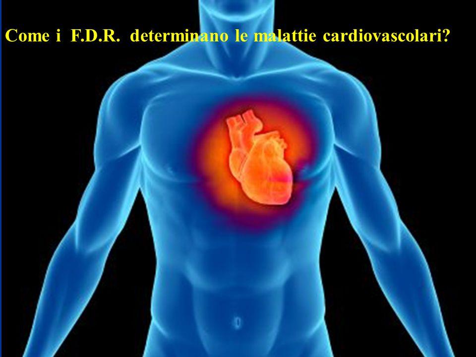 Come i F.D.R. determinano le malattie cardiovascolari?