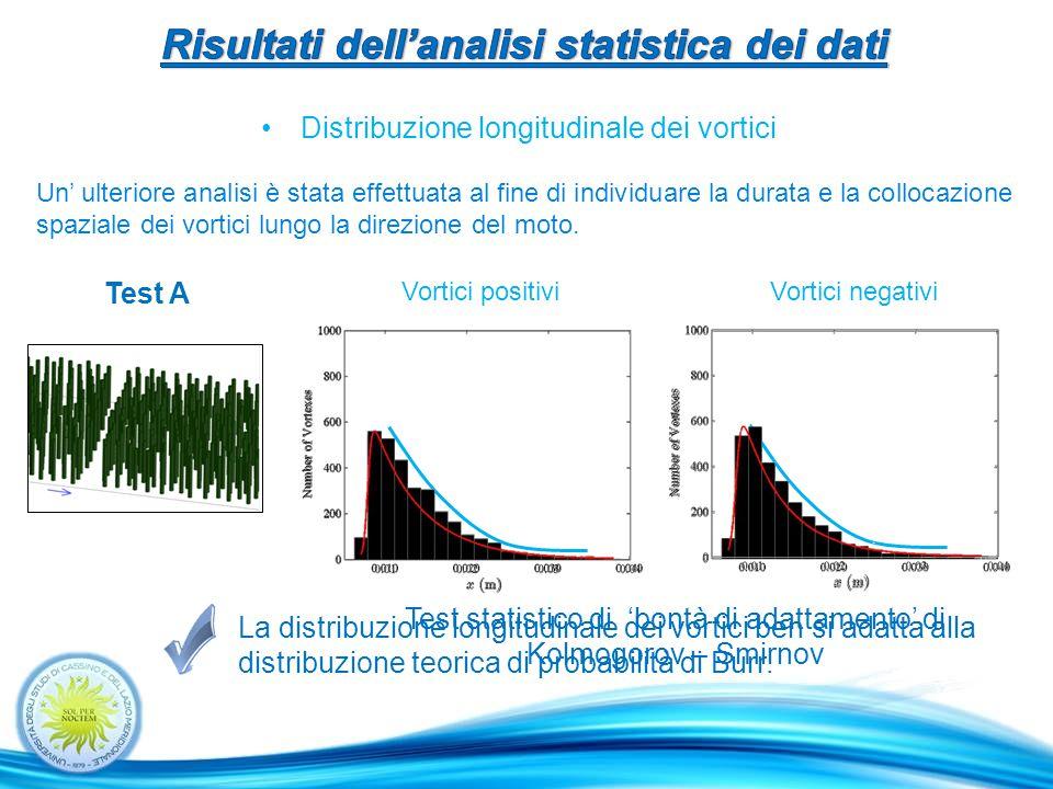 La distribuzione longitudinale dei vortici ben si adatta alla distribuzione teorica di probabilità di Burr.