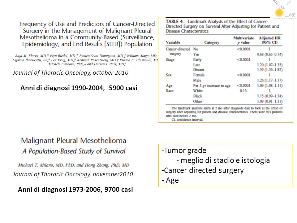 Anni di diagnosi 1990-2004, 5900 casi Anni di diagnosi 1973-2006, 9700 casi Journal of Thoracic Oncology, october 2010 Journal of Thoracic Oncology, n