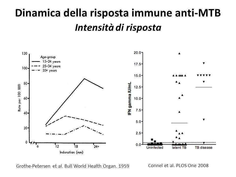 Dinamica della risposta immune anti-MTB Intensità di risposta  Connel et al. PLOS One 2008 Grothe-Petersen et al. Bull World Health Organ. 1959