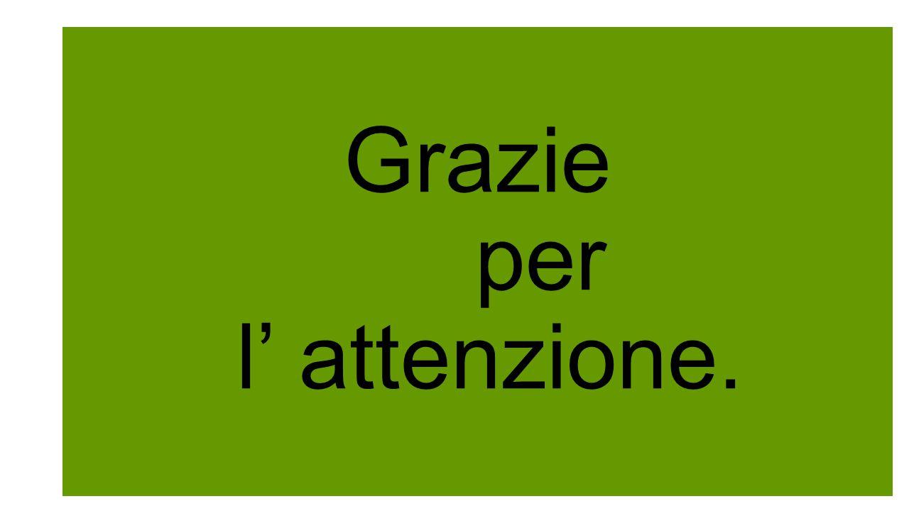 Grazie per l' attenzione.