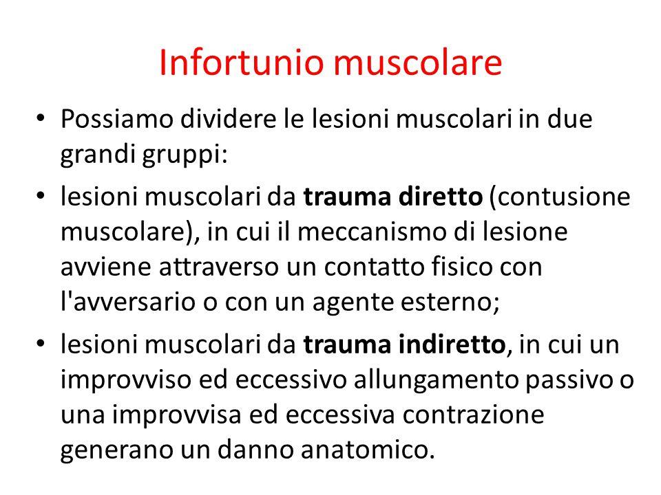 Infortunio muscolare Possiamo dividere le lesioni muscolari in due grandi gruppi: lesioni muscolari da trauma diretto (contusione muscolare), in cui i