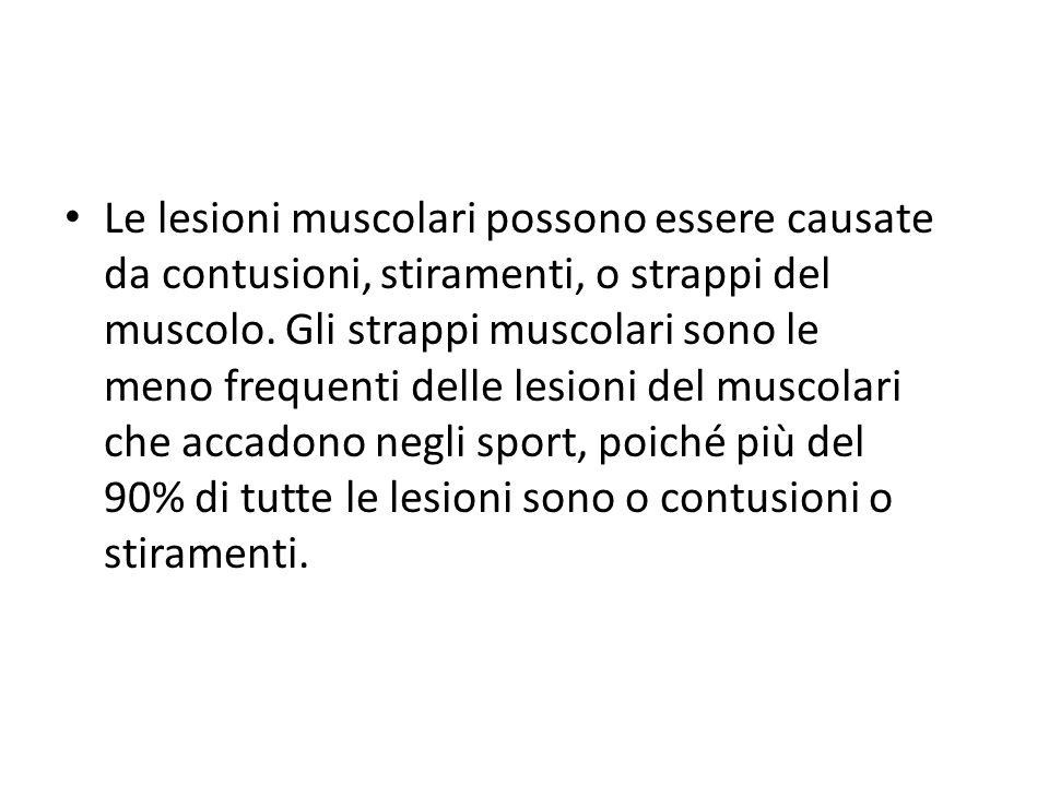 Le lesioni muscolari possono essere causate da contusioni, stiramenti, o strappi del muscolo. Gli strappi muscolari sono le meno frequenti delle lesio