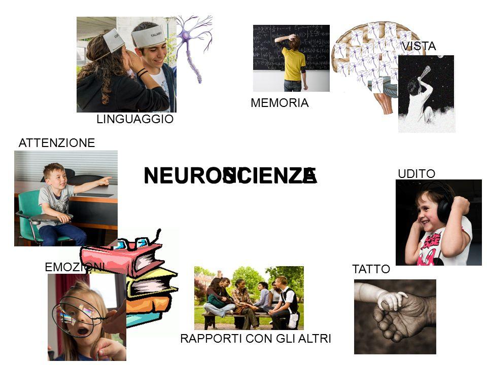 NEUROSCIENZE NEURONI SCIENZA UDITO ATTENZIONE LINGUAGGIO VISTA MEMORIA EMOZIONI TATTO RAPPORTI CON GLI ALTRI