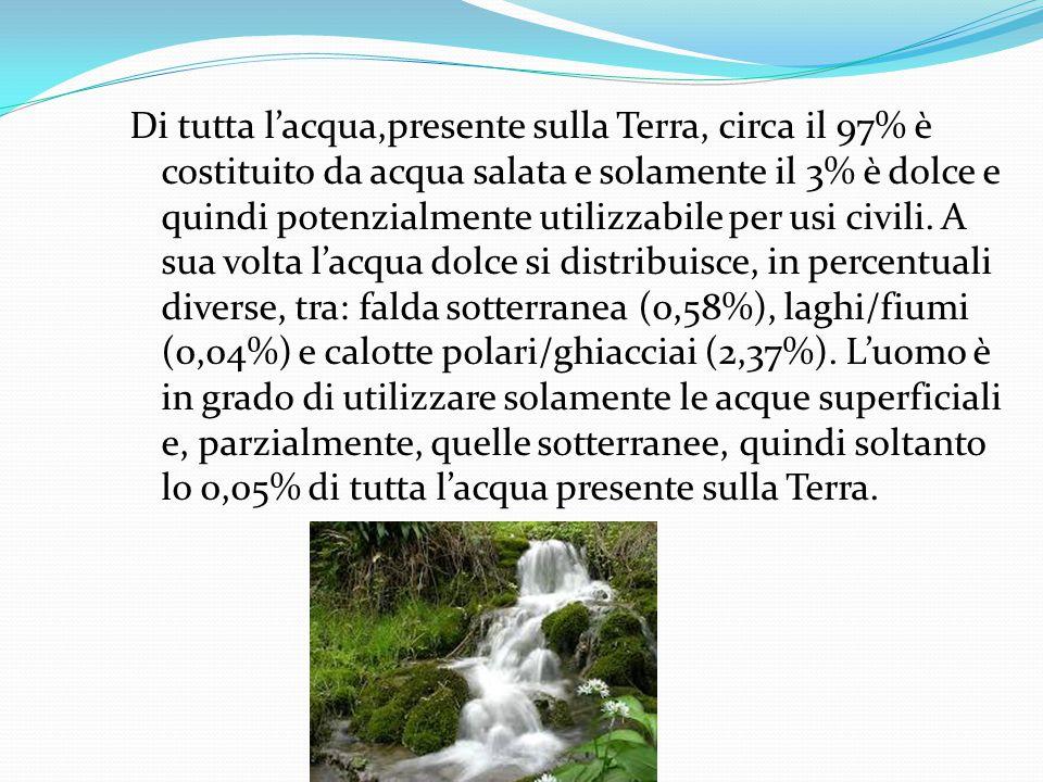 Di tutta l'acqua,presente sulla Terra, circa il 97% è costituito da acqua salata e solamente il 3% è dolce e quindi potenzialmente utilizzabile per us