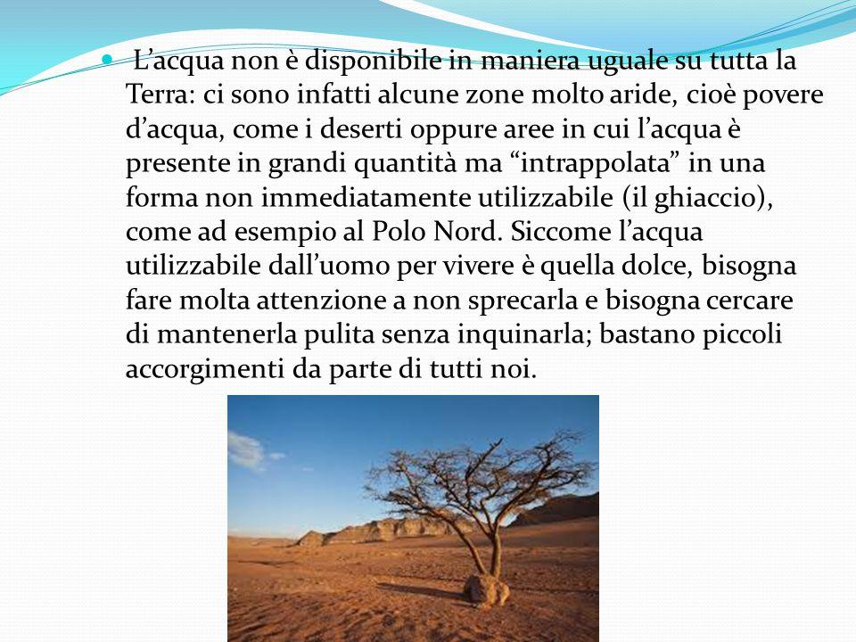 L'acqua non è disponibile in maniera uguale su tutta la Terra: ci sono infatti alcune zone molto aride, cioè povere d'acqua, come i deserti oppure are