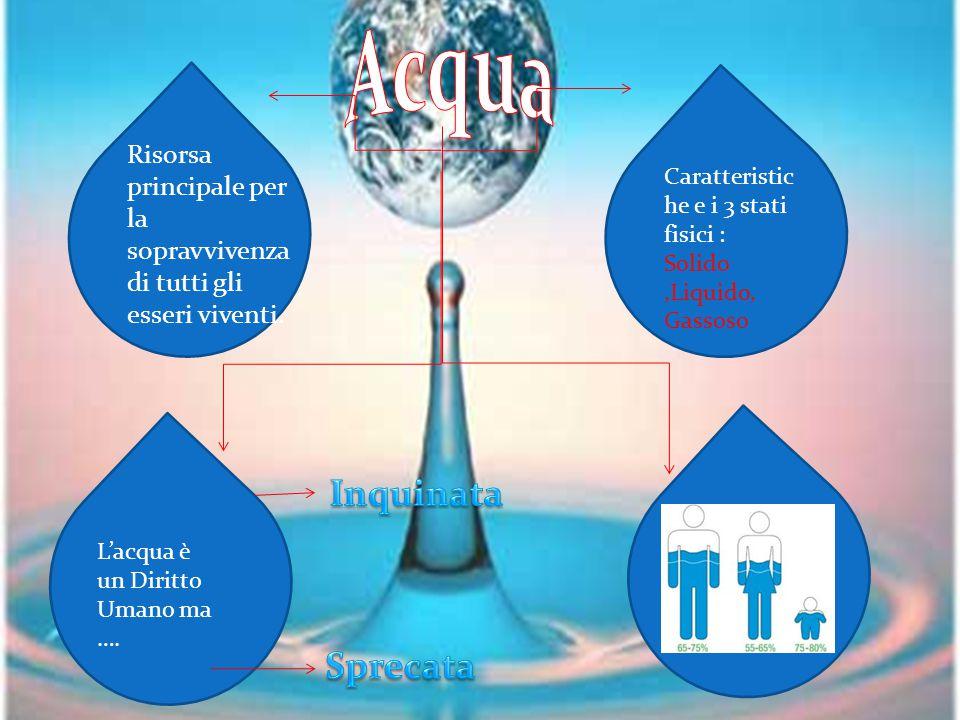 L'acqua è un elemento fondamentale per la vita umana.