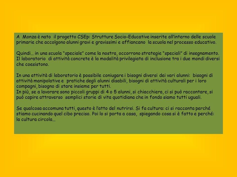 A Monza è nato il progetto CSEp: Strutture Socio-Educative inserite all'interno delle scuole primarie che accolgono alunni gravi e gravissimi e affian