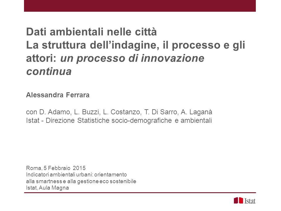 Dati ambientali nelle città La struttura dell'indagine, il processo e gli attori: un processo di innovazione continua Alessandra Ferrara con D.