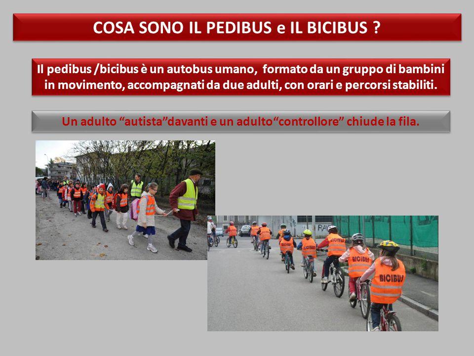 Il pedibus /bicibus è un autobus umano, formato da un gruppo di bambini in movimento, accompagnati da due adulti, con orari e percorsi stabiliti.
