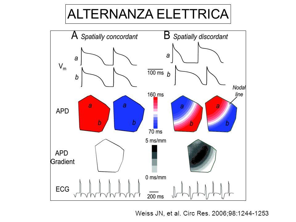 Weiss JN, et al. Circ Res. 2006;98:1244-1253 ALTERNANZA ELETTRICA