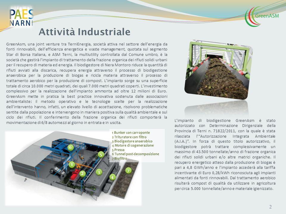 Attività Industriale 2 GreenAsm, una joint venture tra TerniEnergia, società attiva nel settore dell'energia da fonti rinnovabili, dell'efficienza ene