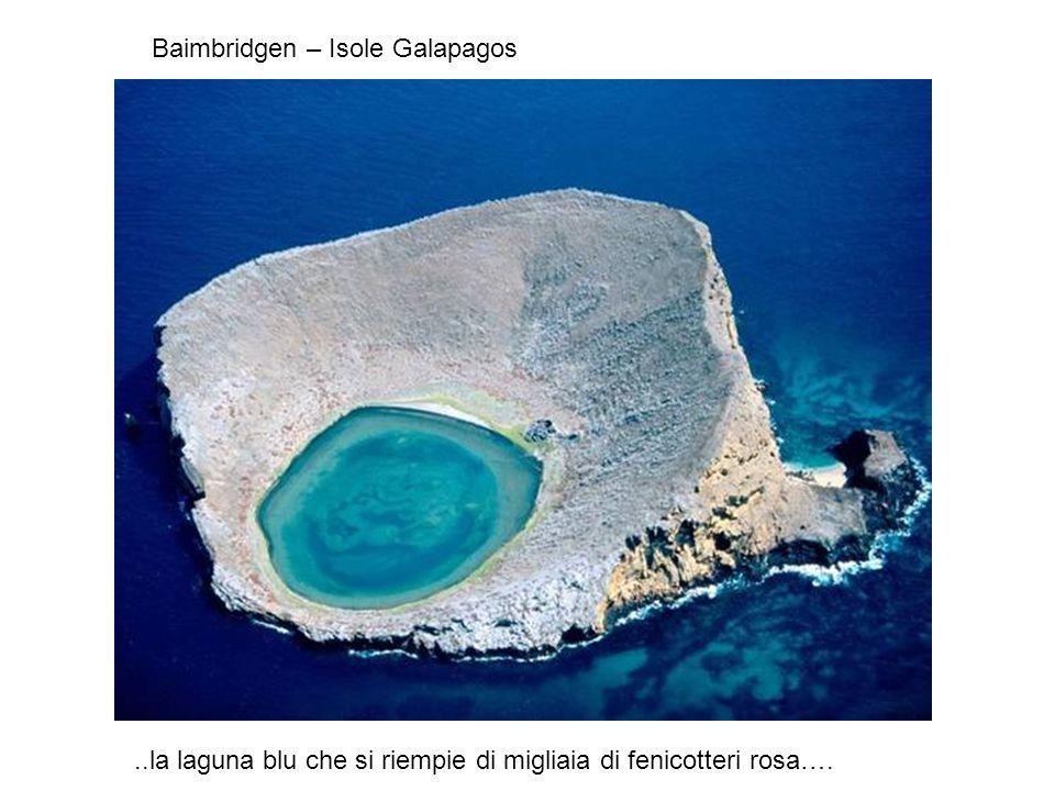 Sono tra le meraviglie del Mondo dichiarate dall UNESCO patrimonio dell'Umanità .