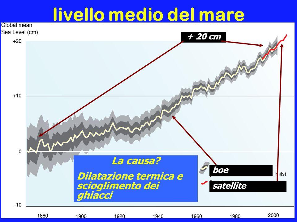 livello medio del mare boe satellite + 20 cm La causa.