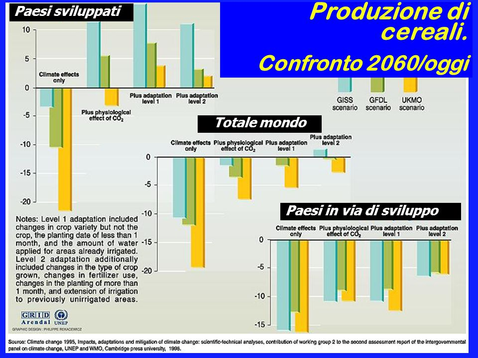 Produzione di cereali. Confronto 2060/oggi Paesi sviluppati Paesi in via di sviluppo Totale mondo