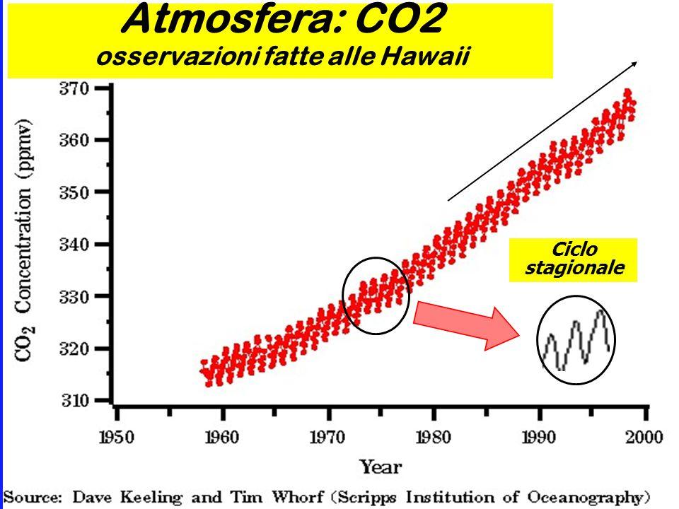 Ciclo stagionale Atmosfera: CO2 osservazioni fatte alle Hawaii