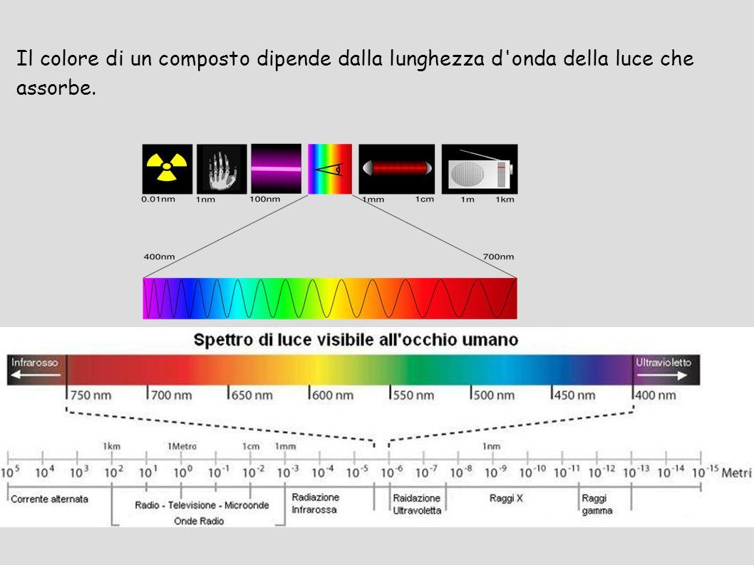 Il colore di un composto dipende dalla lunghezza d onda della luce che assorbe.