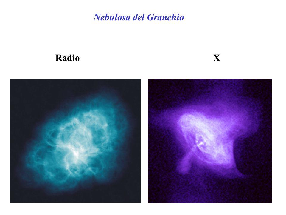Nebulosa del Granchio Radio X