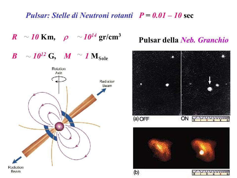 Pulsar: Stelle di Neutroni rotanti P = 0.01 – 10 sec R 10 Km,  10 14 gr/cm 3 B 10 12 G, M 1 M Sole Pulsar della Neb. Granchio