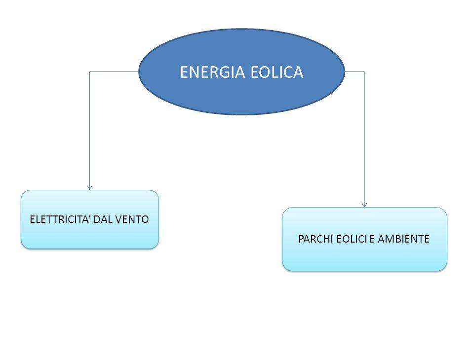 ENERGIA EOLICA PARCHI EOLICI E AMBIENTE ELETTRICITA' DAL VENTO
