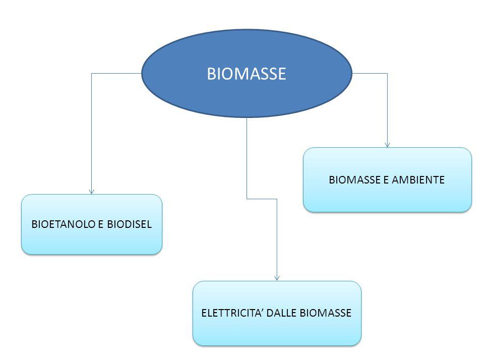 BIOMASSE BIOMASSE E AMBIENTE BIOETANOLO E BIODISEL ELETTRICITA' DALLE BIOMASSE