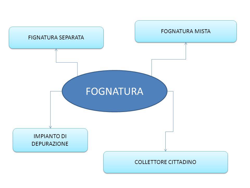 FOGNATURA FIGNATURA SEPARATA COLLETTORE CITTADINO FOGNATURA MISTA IMPIANTO DI DEPURAZIONE