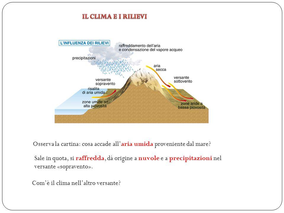Osserva la cartina: cosa accade all'aria umida proveniente dal mare? Sale in quota, si raffredda, dà origine a nuvole e a precipitazioni nel versante