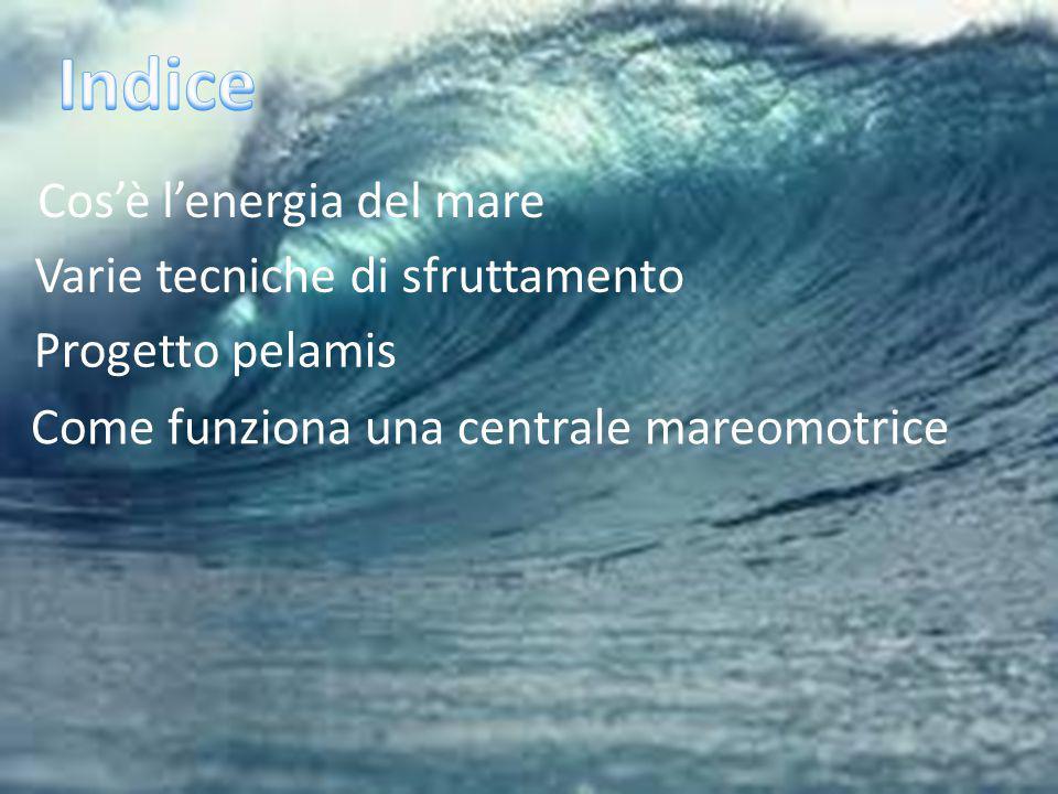 Cos'è l'energia del mare Varie tecniche di sfruttamento Progetto pelamis Come funziona una centrale mareomotrice
