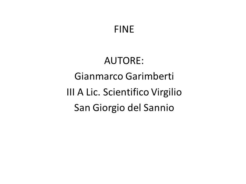 FINE AUTORE: Gianmarco Garimberti III A Lic. Scientifico Virgilio San Giorgio del Sannio