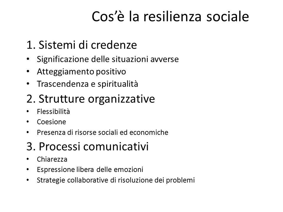 Cos'è la resilienza sociale 1.