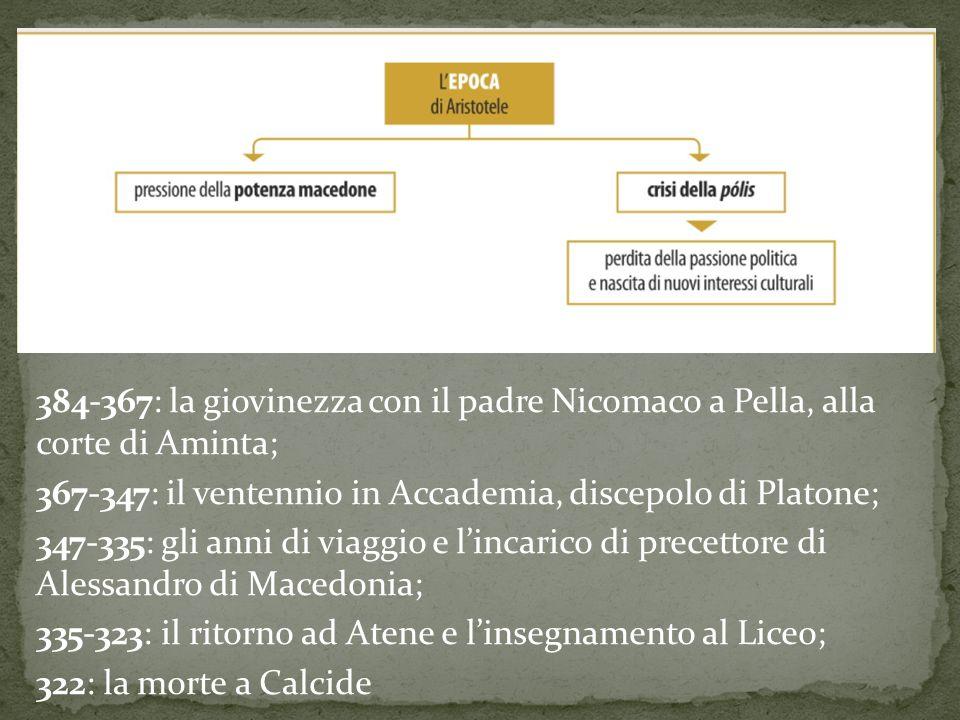 384-367: la giovinezza con il padre Nicomaco a Pella, alla corte di Aminta; 367-347: il ventennio in Accademia, discepolo di Platone; 347-335: gli ann