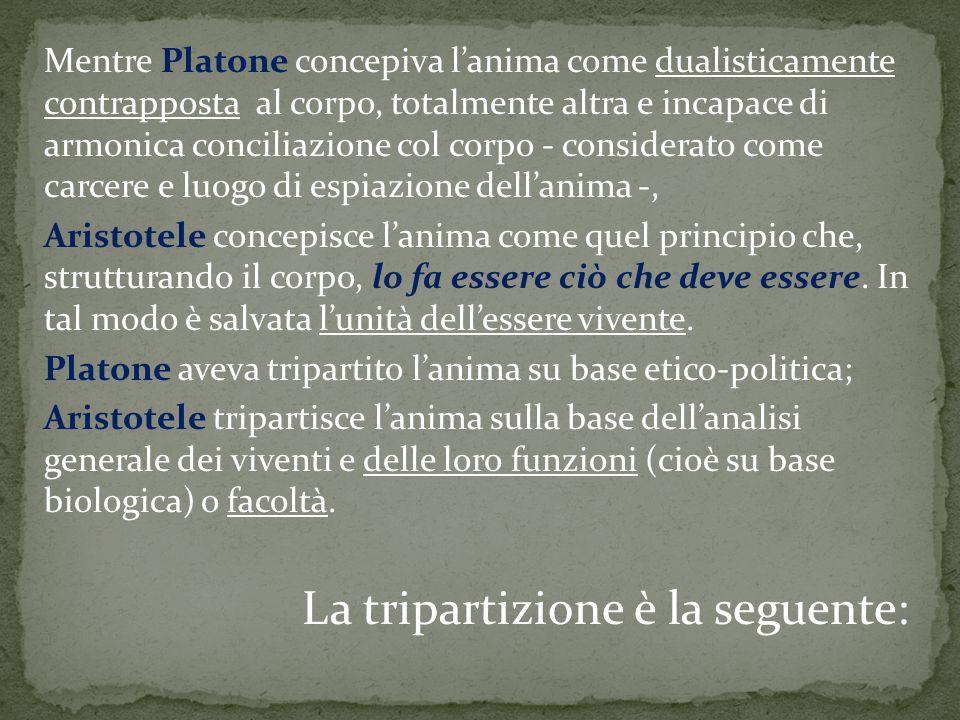 Mentre Platone concepiva l'anima come dualisticamente contrapposta al corpo, totalmente altra e incapace di armonica conciliazione col corpo - conside