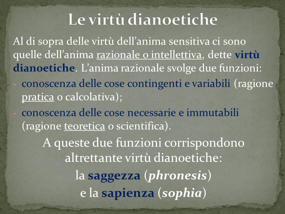 Al di sopra delle virtù dell'anima sensitiva ci sono quelle dell'anima razionale o intellettiva, dette virtù dianoetiche. L'anima razionale svolge due
