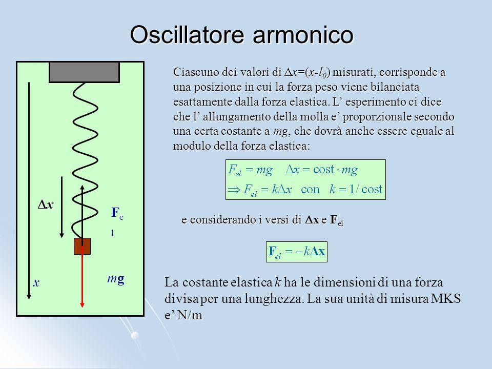 Oscillatore armonico Ciascuno dei valori di  x=(x-l 0 ) misurati, corrisponde a una posizione in cui la forza peso viene bilanciata esattamente dalla