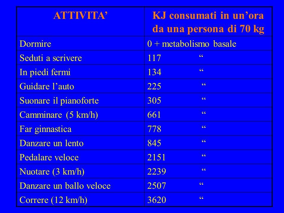 """ATTIVITA'KJ consumati in un'ora da una persona di 70 kg Dormire0 + metabolismo basale Seduti a scrivere117 """" In piedi fermi134 """" Guidare l'auto225 """" S"""