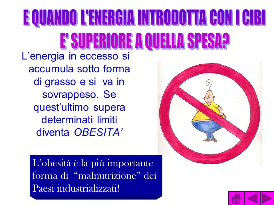 L'energia in eccesso si accumula sotto forma di grasso e si va in sovrappeso.