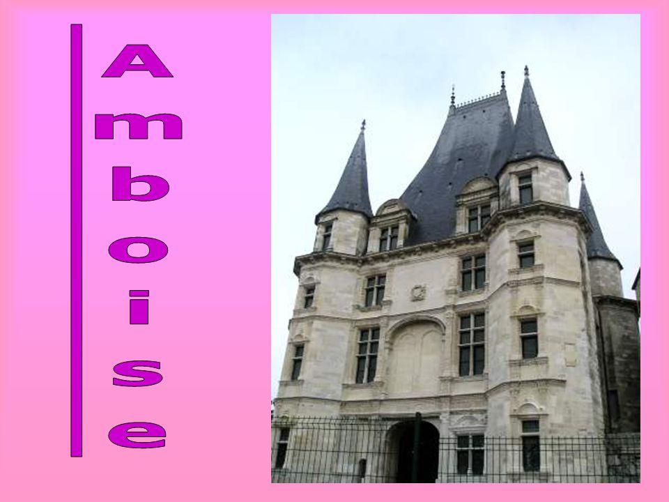 Il castello di Chaumont, come molti castelli della Loira, debbono gran parte della loro bellezza al luogo in cui si trovano.