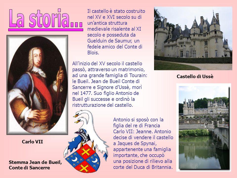 Il castello è stato costruito nel XV e XVI secolo su di un'antica struttura medievale risalente al XI secolo e posseduta da Guelduin de Saumur, un fed