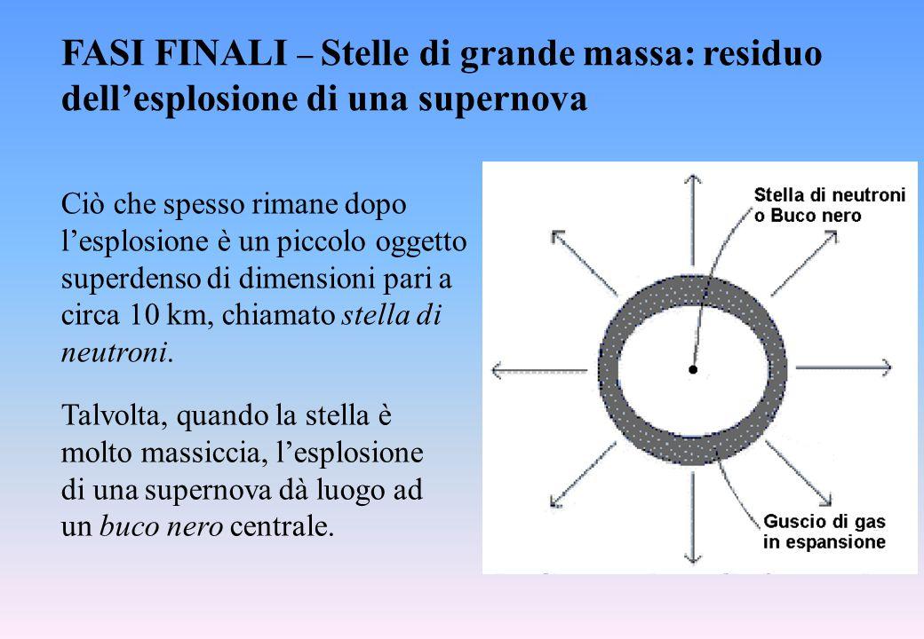 FASI FINALI  Stelle di grande massa: residuo dell'esplosione di una supernova Ciò che spesso rimane dopo l'esplosione è un piccolo oggetto superdenso