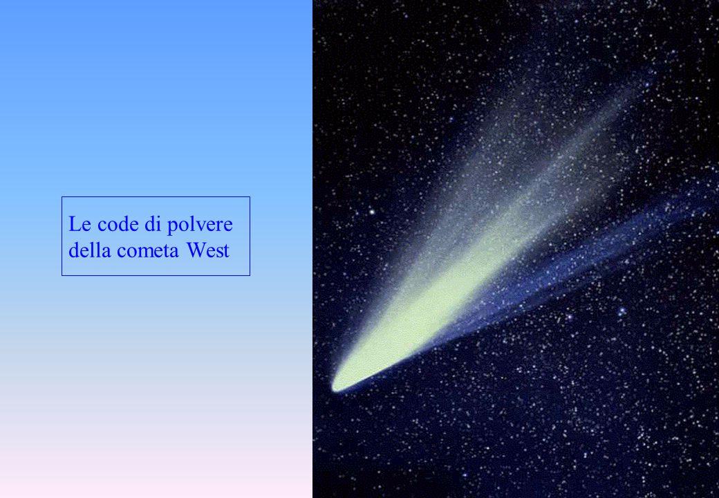 Le code di polvere della cometa West