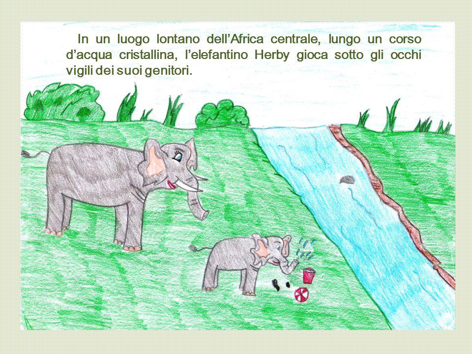 In un luogo lontano dell'Africa centrale, lungo un corso d'acqua cristallina, l'elefantino Herby gioca sotto gli occhi vigili dei suoi genitori.