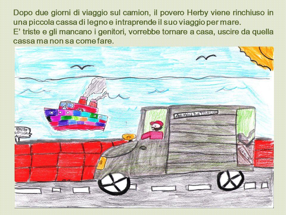 Dopo due giorni di viaggio sul camion, il povero Herby viene rinchiuso in una piccola cassa di legno e intraprende il suo viaggio per mare. E' triste