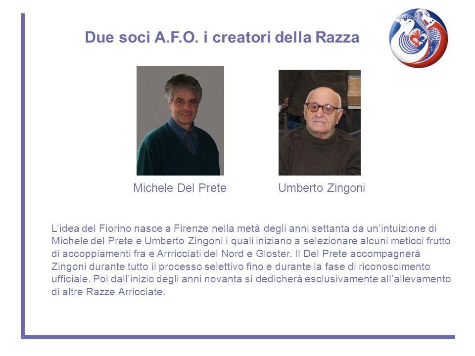 L'idea del Fiorino nasce a Firenze nella metà degli anni settanta da un'intuizione di Michele del Prete e Umberto Zingoni i quali iniziano a seleziona